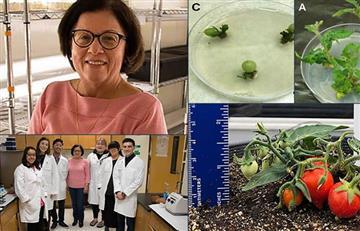 Ella es Martha Orozco científica colombiana que hace tomates para la NASA