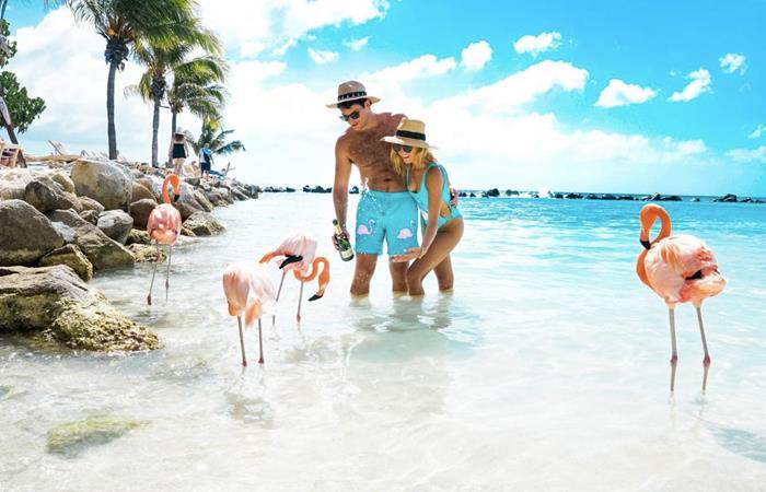 Descuentos Aruba Black Friday