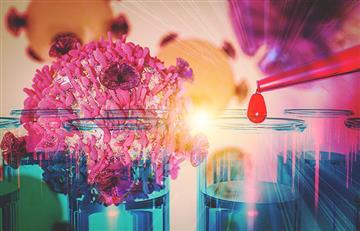 Nuevas terapias para leucemia linfocítica crónica se encaminan hacia la cura