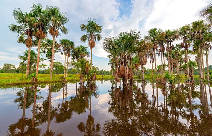 Lugares Colombia visitar diciembre