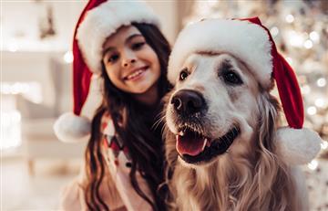 ¿Son las mascotas un buen regalo para los niños en Navidad?