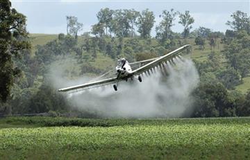Colombia retomaría aspersión aérea de glifosato para cultivos ilícitos en el 2020