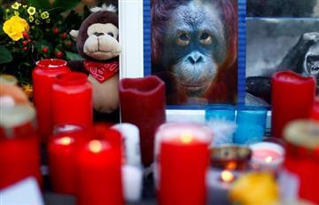 Incendio en zoológico de Alemania dejó más de 30 animales muertos