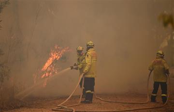 """""""Humo de Australia podría dar la vuelta al mundo"""": Organización Meteorológica Mundial"""