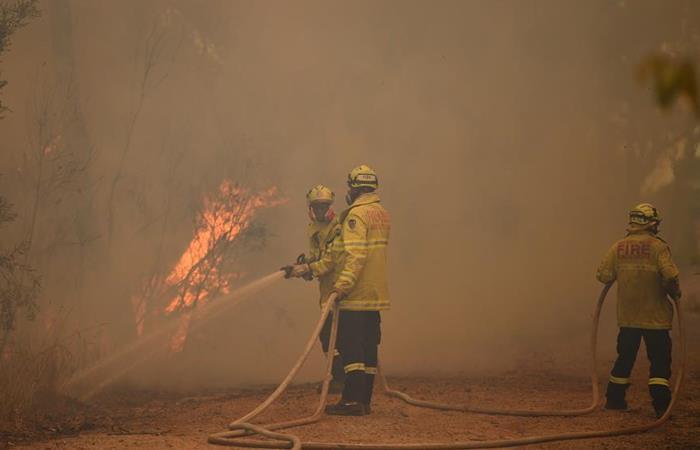 Los incendios han arrasado con millones de hectáreas en Australia. Foto: EFE