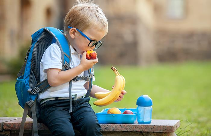 Lonchera saludable para tus hijos. Foto: Shutterstock
