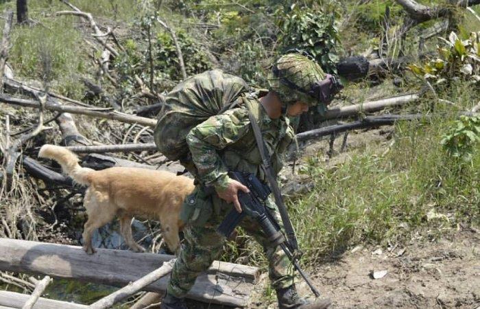 Soldados del Ejército Nacional patrullan el municipio de Chocó. Foto: Twitter