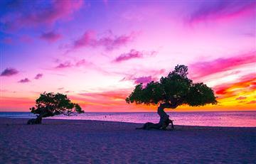 Aruba, la isla más feliz del Caribe y destino preferido de los colombianos