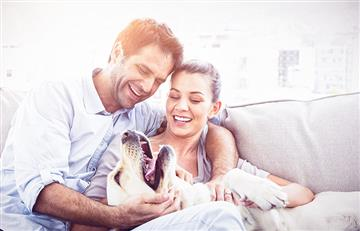 Las 6 razas de perro más tiernas y amorosas
