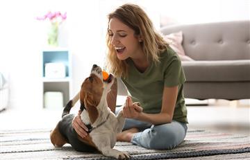 Siempre deberías hablarle a tu perro como un bebé. La ciencia lo confirma