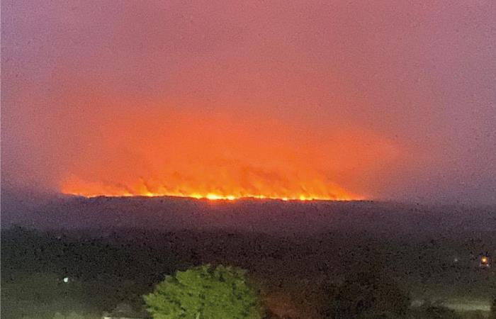 disidencias farc incendios forestales