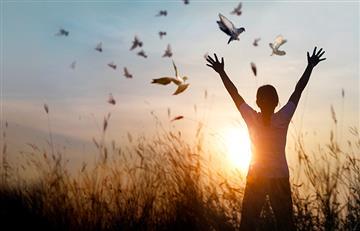 El desapego: La clave para alcanzar la felicidad