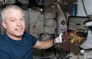 Ahora la NASA cultiva lechugas sin microbios en el espacio