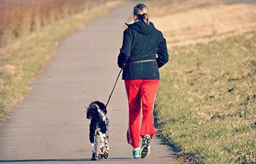 Esta es la forma correcta de ejercitarte con tu perro