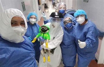 Harley: el perro que anima al personal médico en México