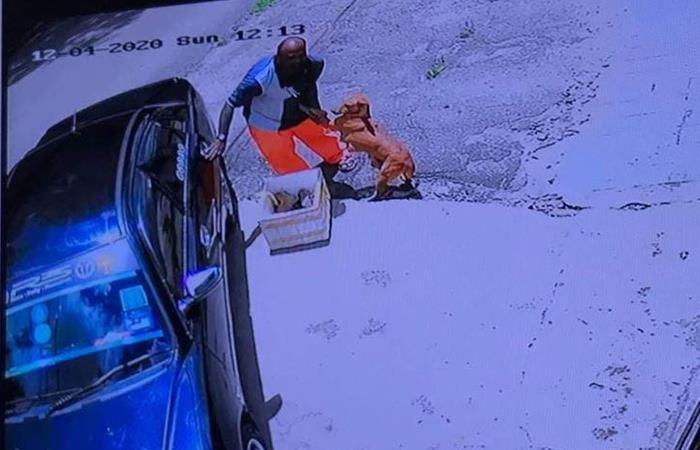 Momento en el que el hombre abandona a los perritos. Foto: Facebook