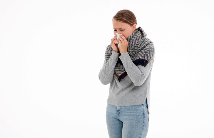 Existen tratamientos naturales para la rinitis. Foto: Pixabay