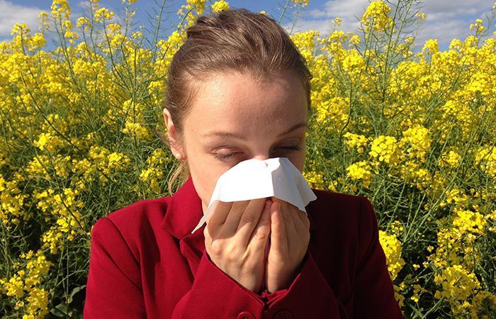 Remedios naturales para los síntomas de la rinitis. Foto: Pixabay