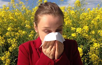 Remedidos caseros para deshacerte de la rinitis