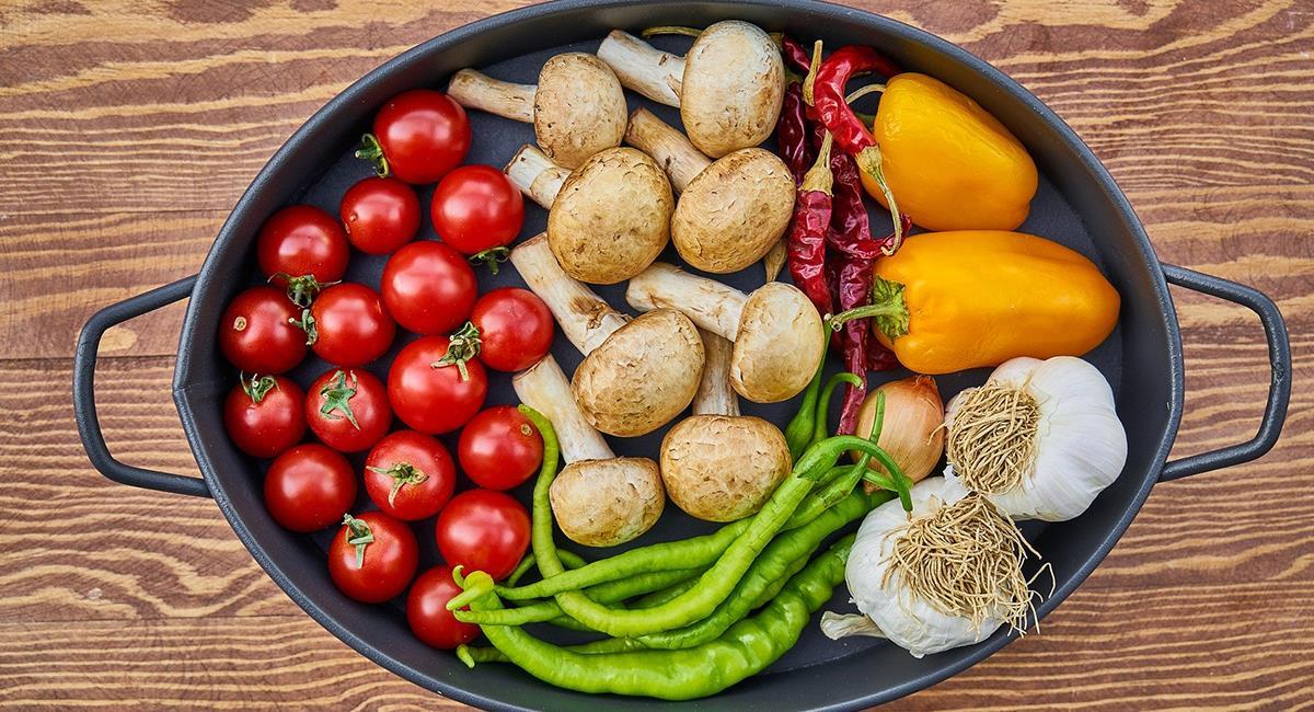 ¿Dietas vegetarianas en las mascotas?. Foto: Pixabay