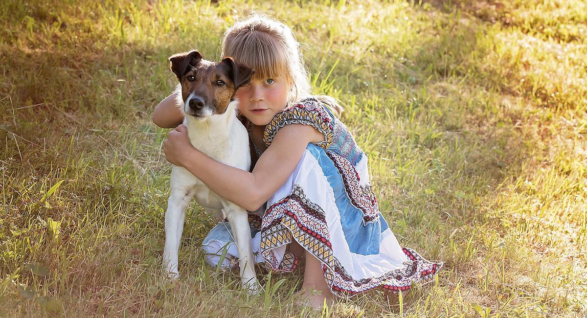 Estas son las razas perfectas para los hogares con niños. Foto: Pixabay