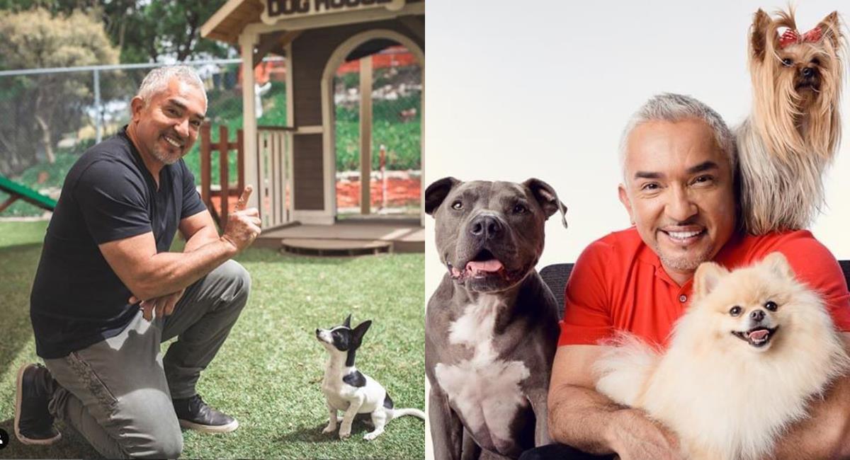 Cesar Millan, 'el encantador de perros' comparte consejos de entrenamiento de perros. Foto: Instagram @cesarsway