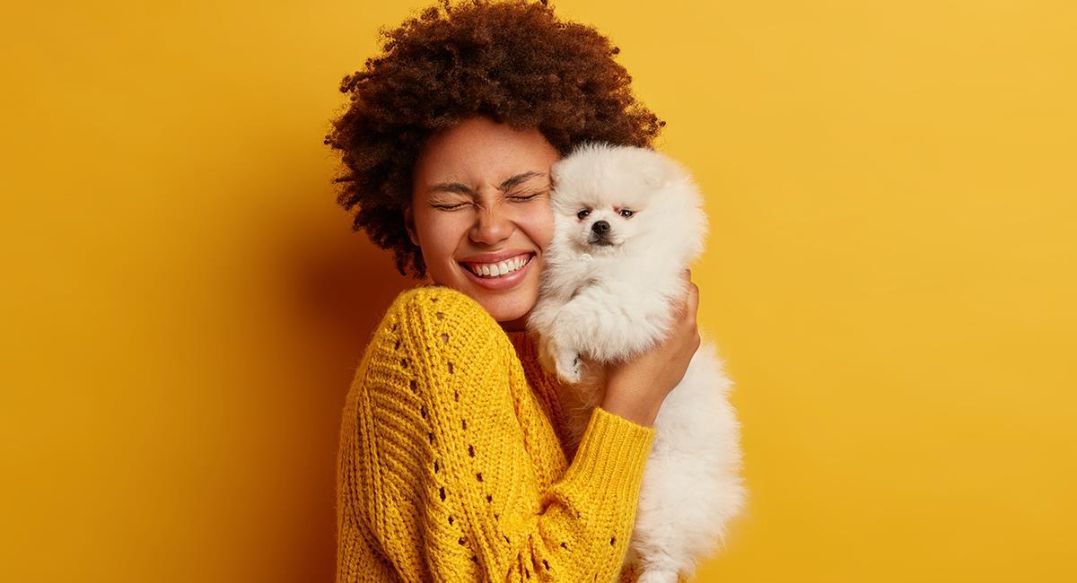 Estas son las cosas que tu perro odia que hagas. Foto: Shutterstock