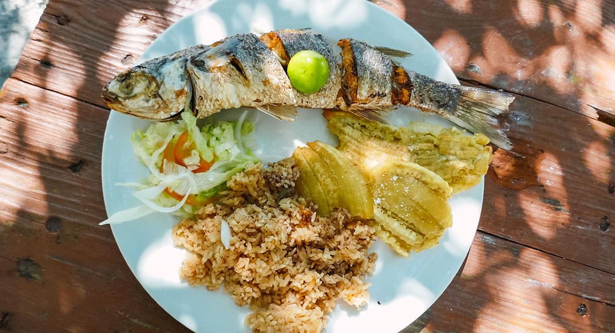 El sabor caribeño es una 'fusión' de cultura y gastronomía. Foto: Pixabay