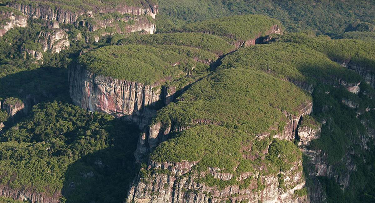 Las zonas protegidas sobrepasan las 12 mil hectáreas de selva. Foto: Parquesnacionales.gov.co