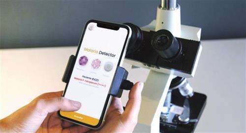 Colombianos desarrollaron software que detecta la malaria en segundos