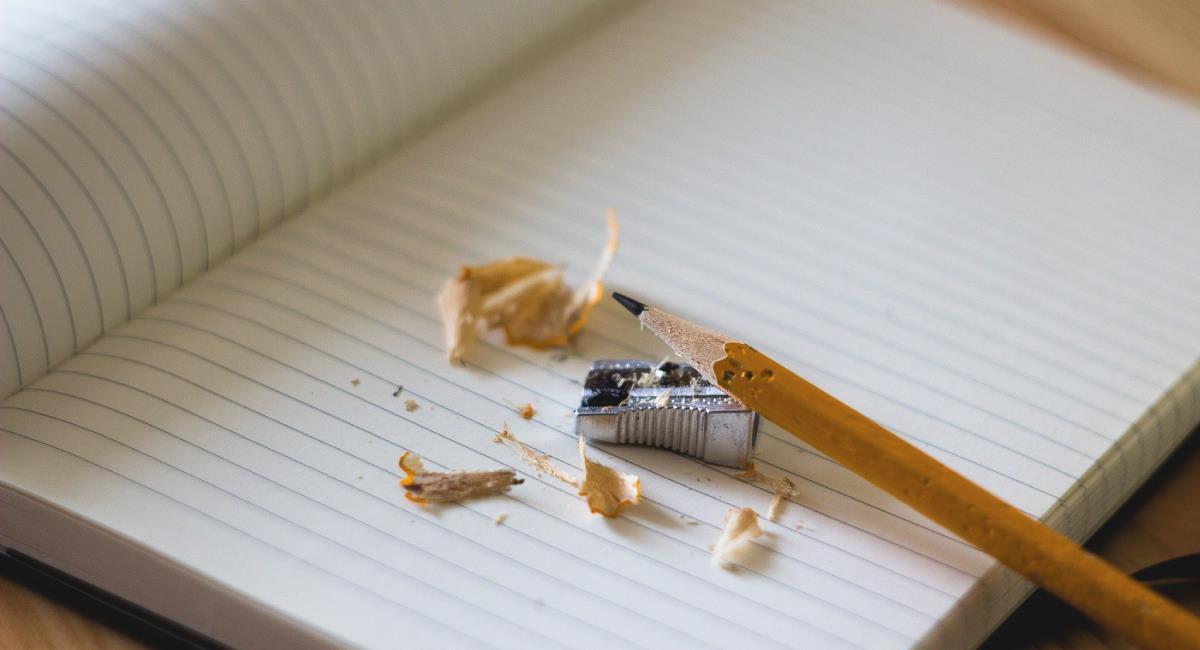 Pide fomentar la educación profesional. Foto: Pixabay Free-Photos