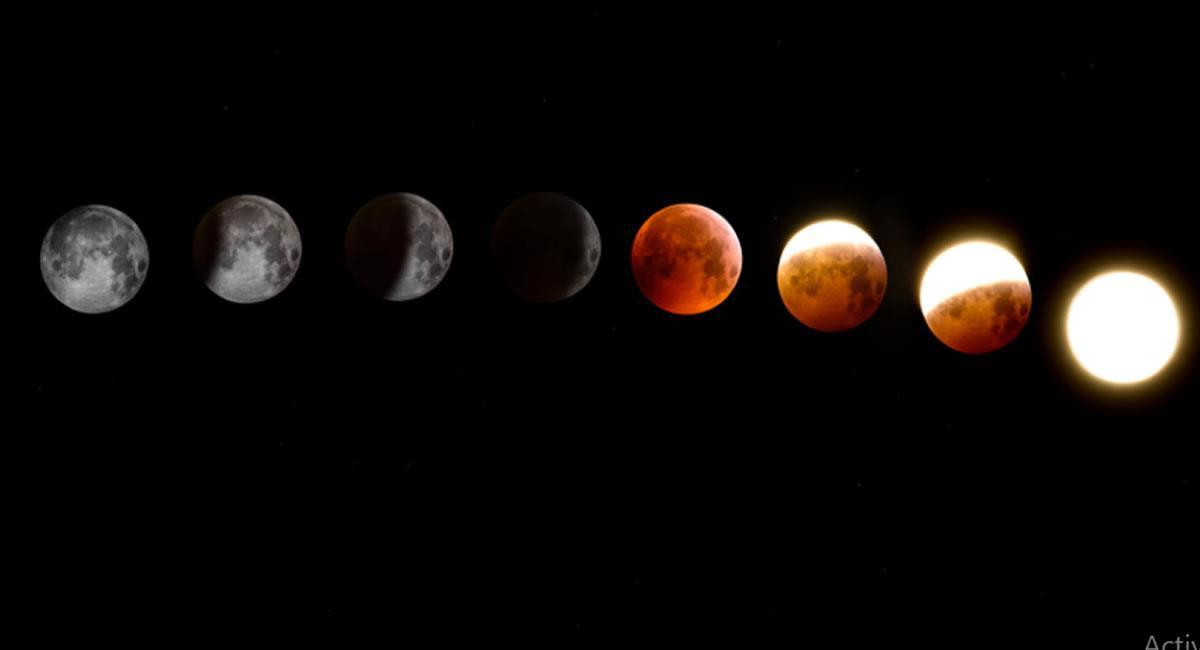"""Según las investigaciones, el Sistema Solar tiene un paralelo """"como réplica"""". Foto: Pexels"""