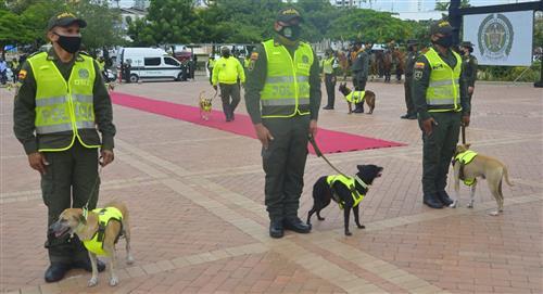 Gatos y perros servicio Policía fueron homenajeados Cartagena