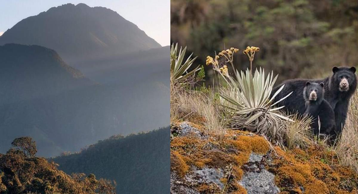 Los volcanes Doña Juana y Las Ánimas se ubican en el Parque Nacional Natural Complejo volcánico Doña Juana- Cascabel. Foto: Facebook Parque Nacional Natural Complejo Volcánico