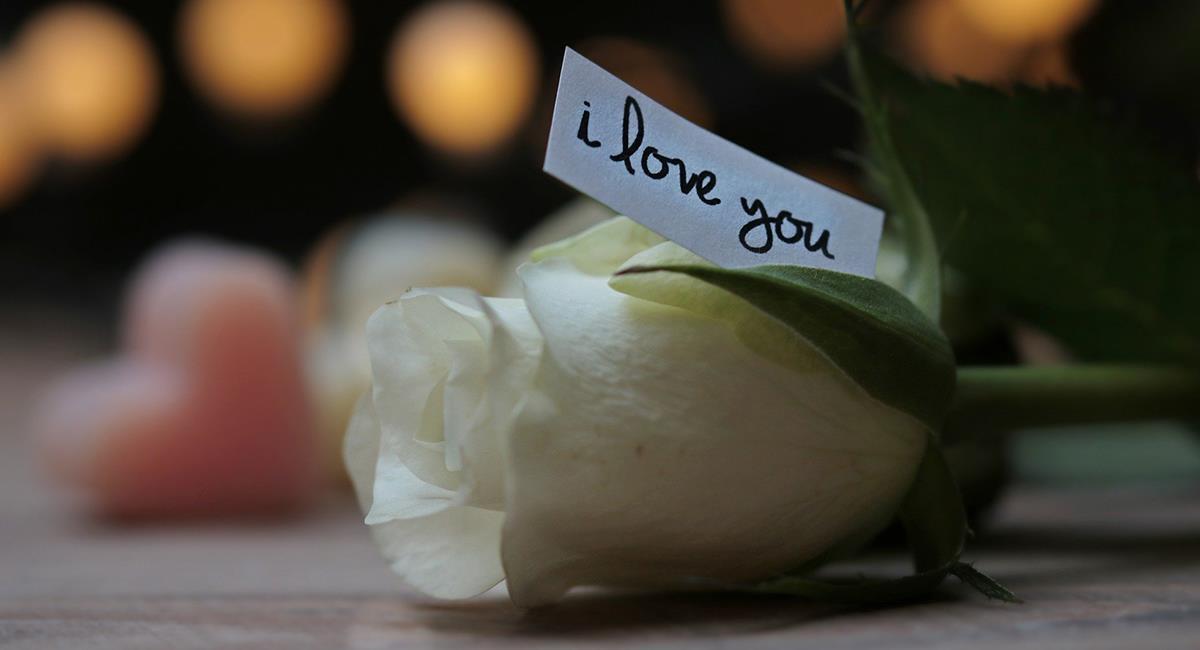 """Esta es la forma de decir """"te quiero"""" de cada signo del zodiaco. Foto: Pixabay"""