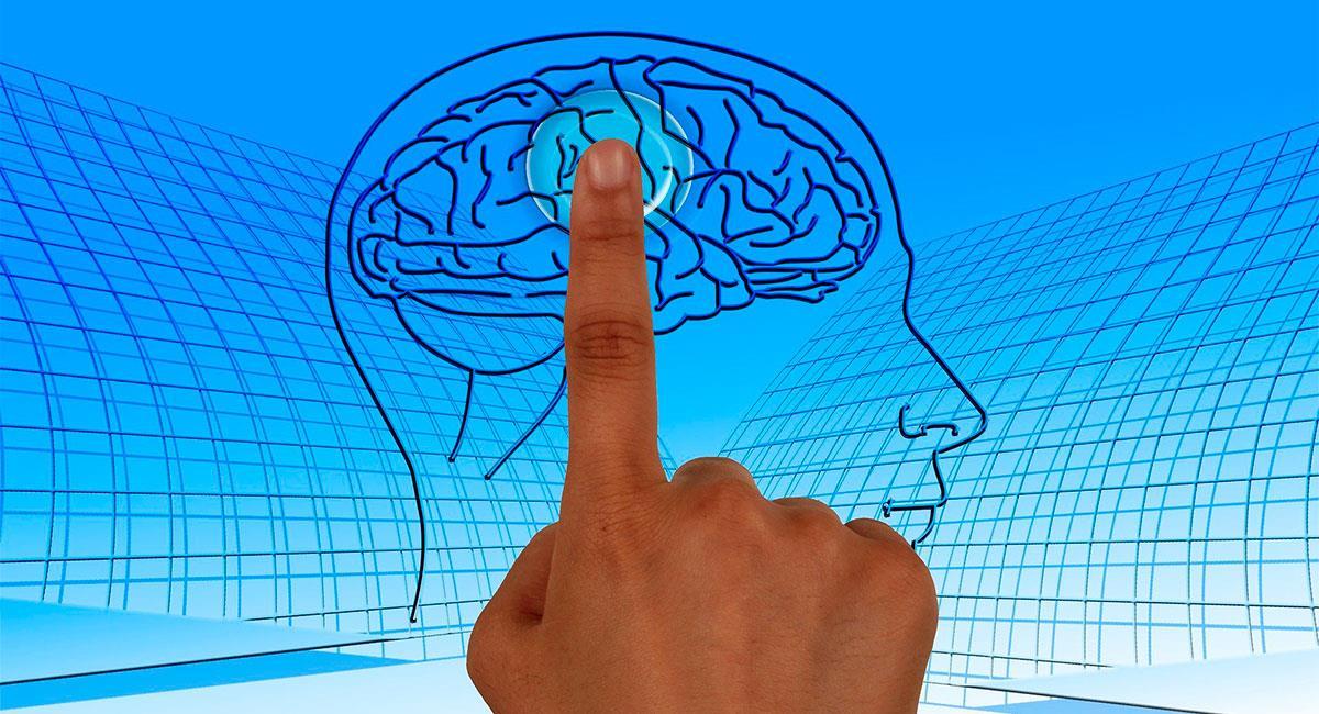 nuevas tendencias en Neuropsicología Clínica. Foto: Pixabay