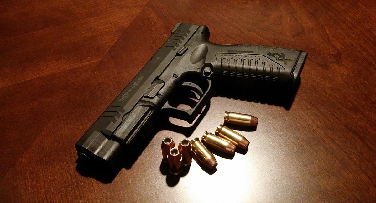 El número de armas de fuego amparadas en Colombia representa el 14% del total en poder de los civiles. Foto: Pixabay
