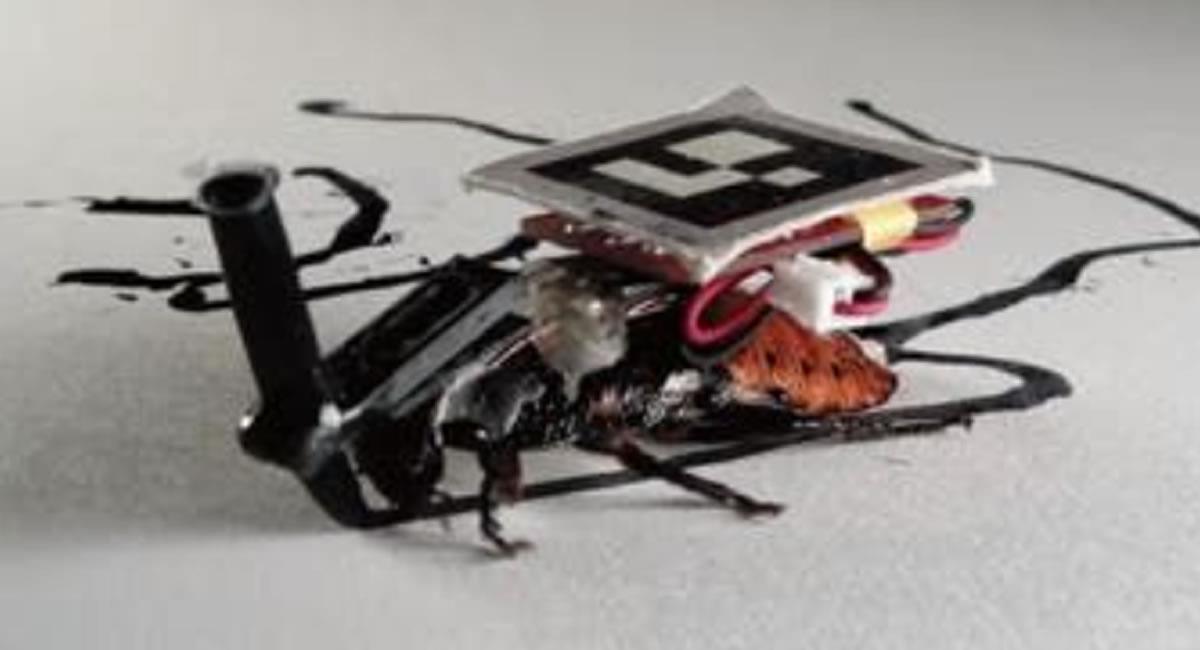 Los sensores pueden ser controlados con los insectos conectados. Foto: Twitter @LNTecnología