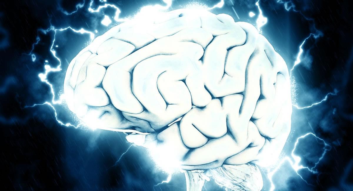 El cerebro puede esconder más similitudes con el Universo, según los expertos. Foto: Pixabay