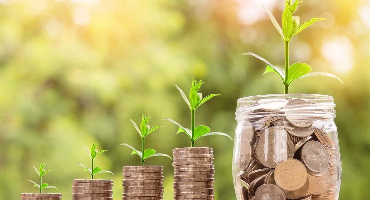 Aprende a manejar tus finanzas para recoger frutos en el futuro. Foto: Pixabay