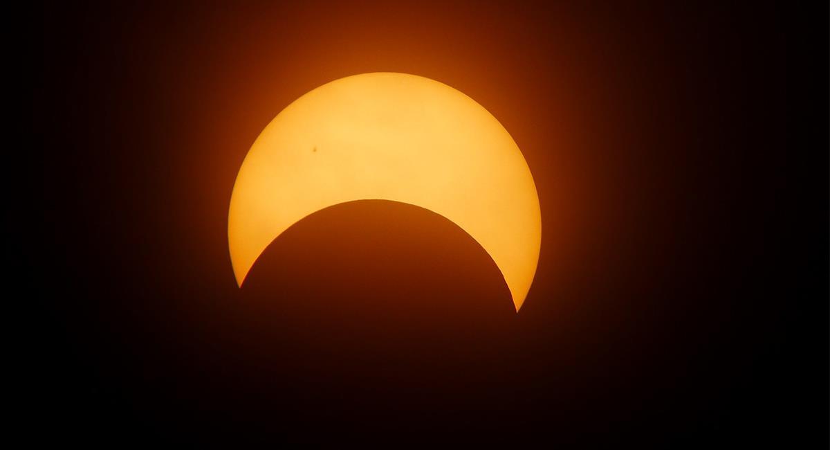 Los animales perciben el eclipse solar y su comportamiento cambia. Foto: Pixabay