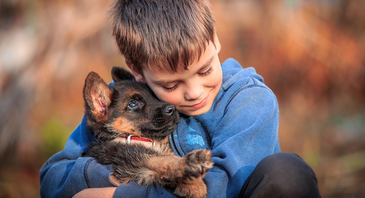 Conmovedora reacción de un niño al ver que vacunan a su cachorro. Foto: Shutterstock