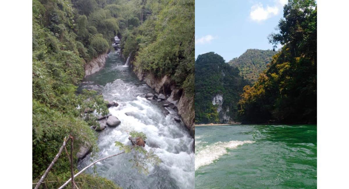 Los ríos de Caldas, están generando 'Paseos de Olla'. Foto: Twitter @AlejandroLSFD
