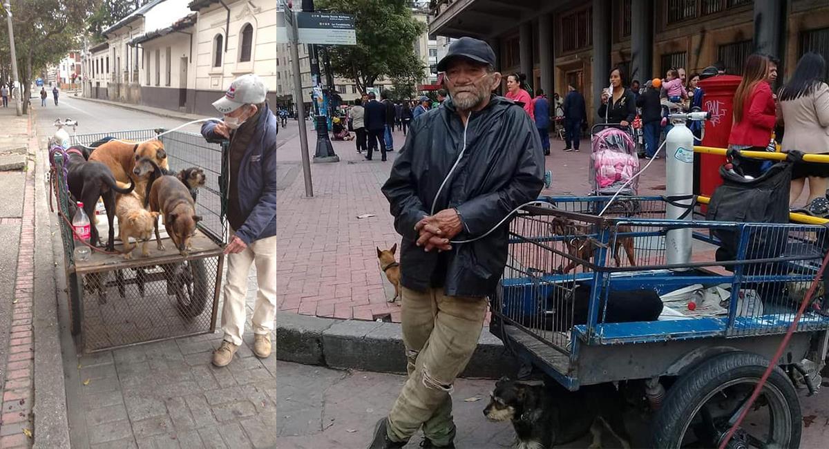 12 perritos perdieron a su dueño y ahora buscan un hogar. Foto: Facebook Hogar de Paso María Esperanza Poveda