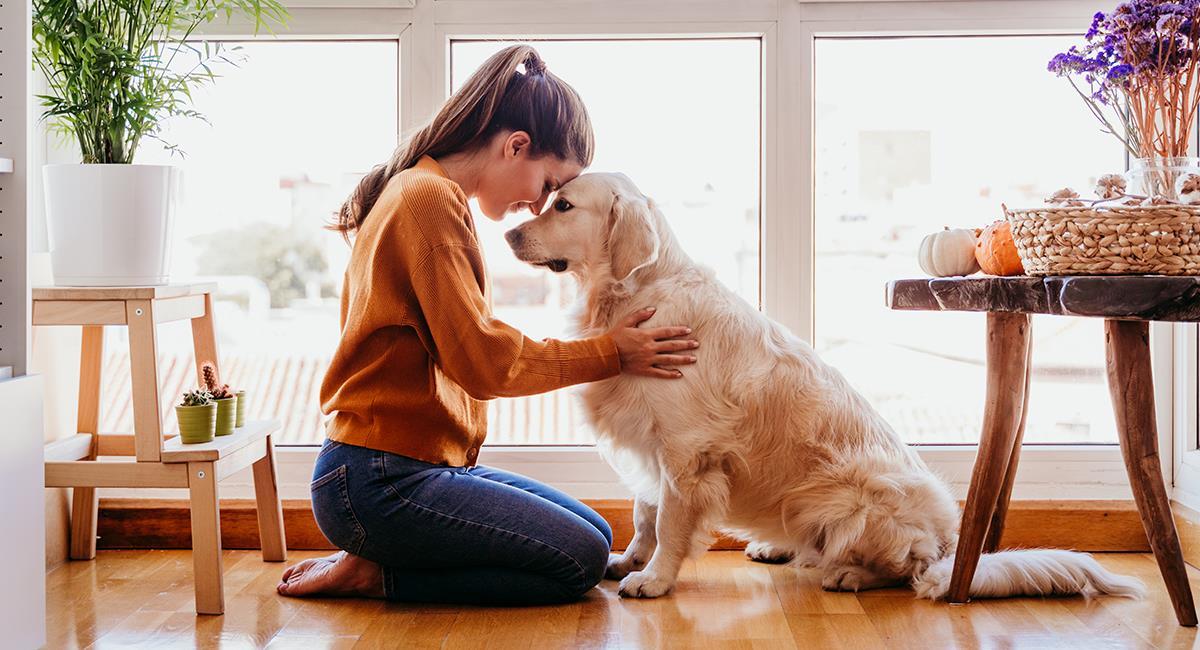 Las mujeres fueron la clave en la domesticación de los perros. Foto: Shutterstock