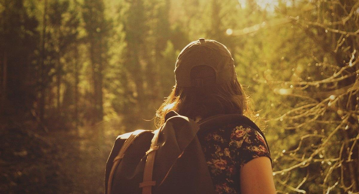 """Los viajes largos, aún son una """"incertidumbre"""" para el mundo. Foto: Pixabay"""
