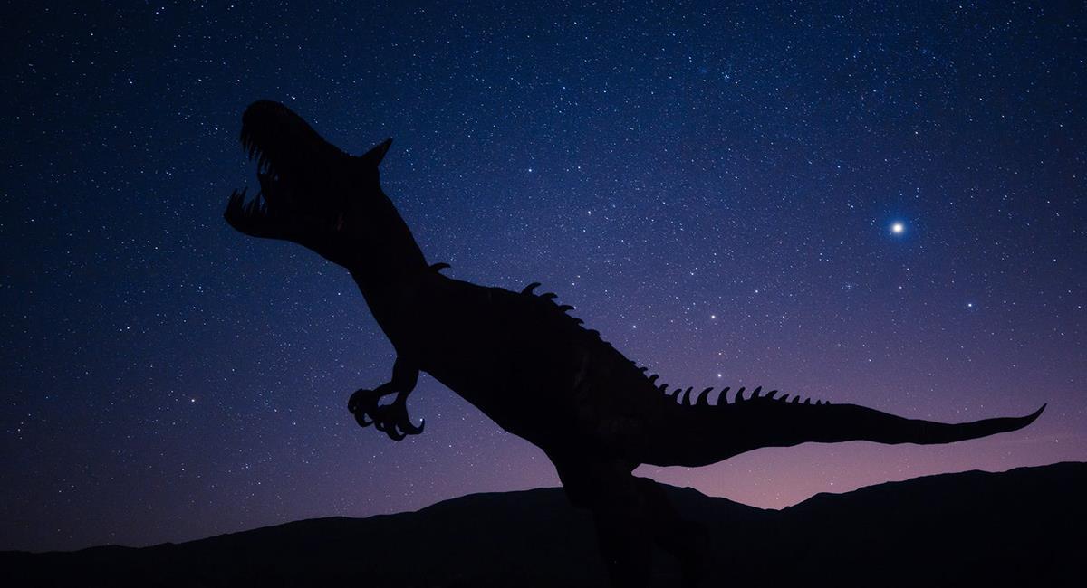 """Los expertos sugieren que se trató de un """"cometa de largo período"""" y no un asteroide. Foto: Pexels"""