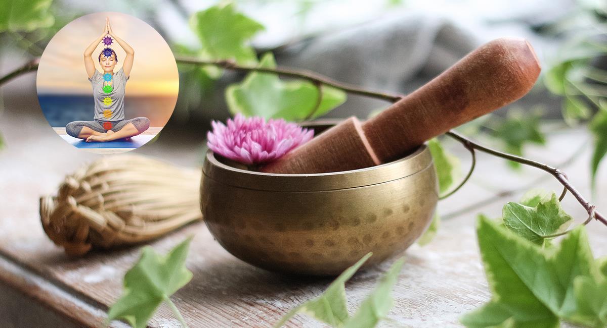 Estas son las plantas que debes usar para alinear tus chakras. Foto: Shutterstock