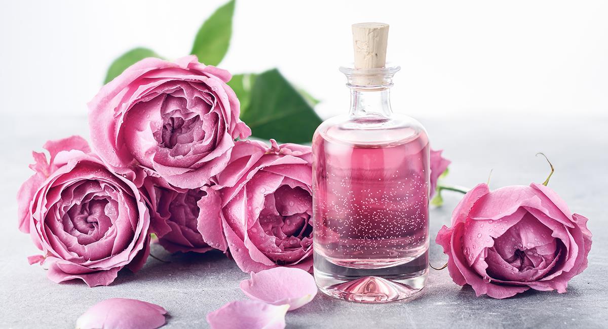 Trucos de belleza: 7 increíbles usos que puedes darle al agua de rosas. Foto: Shutterstock