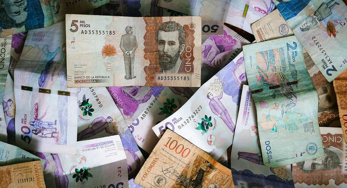 El Gobierno Nacional espera ahorrar bastante dinero recortando gastos en las entidades adscritas al Presupuesto General de la Nación. Foto: Pixabay